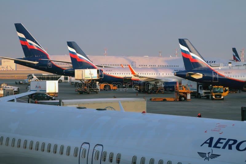 Sheremetyevo, Moskau, Russland - 13. November 2017: Service von Flugzeugen am Flughafen stockbilder