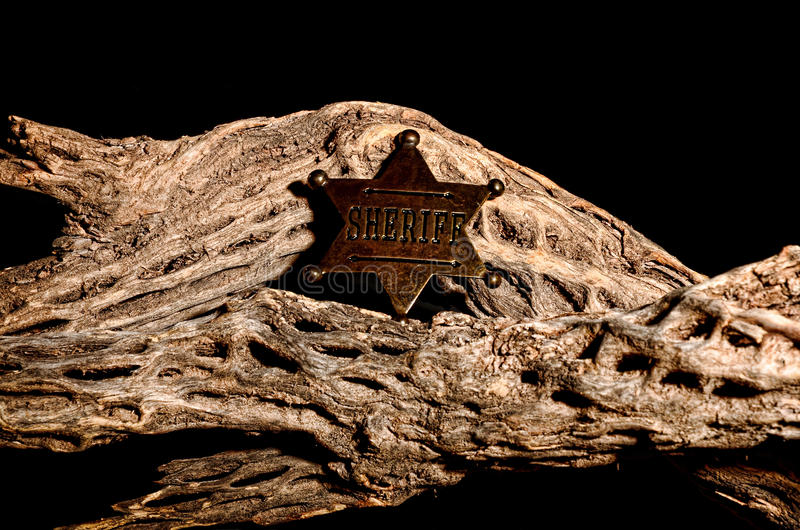 Download Sheriff Badge stock image. Image of historic, skeleton - 21990501