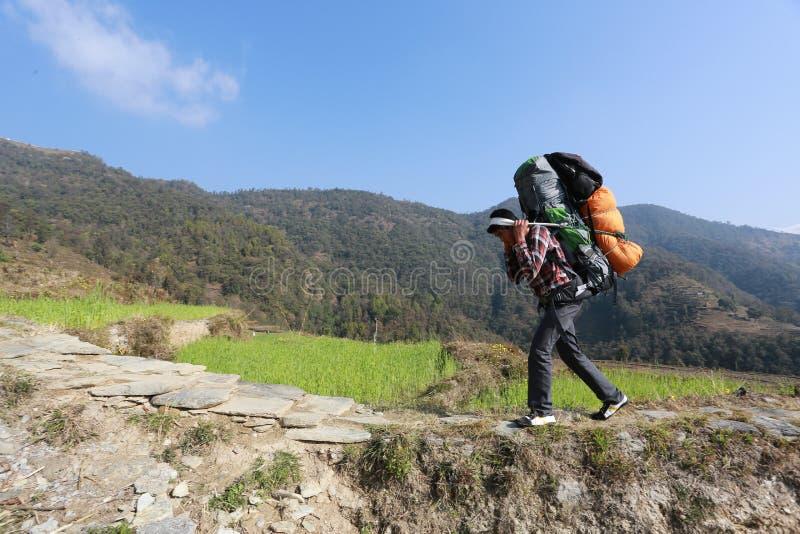 Sherpa carry heavy load. Dhampus, Nepal - Feb 23 : sherpa carry heavy load at Dhampus, Feb 23, 2015 stock photo