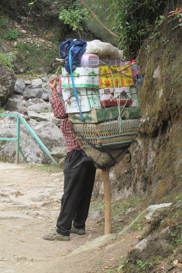 Sherpa furtian niesie kosz w Nepal trekking ścieżce obraz royalty free