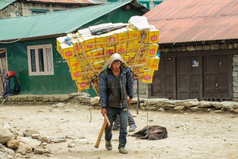 Sherpa portvakt som bär en tung påfyllning i Nepal royaltyfria foton