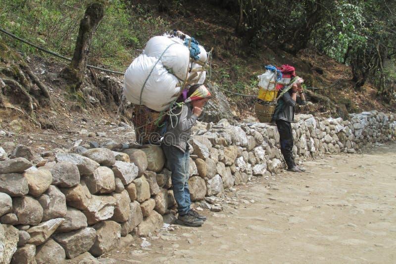 Sherpa-Träger tragen Korb im Nepal-Trekkingsweg lizenzfreie stockbilder
