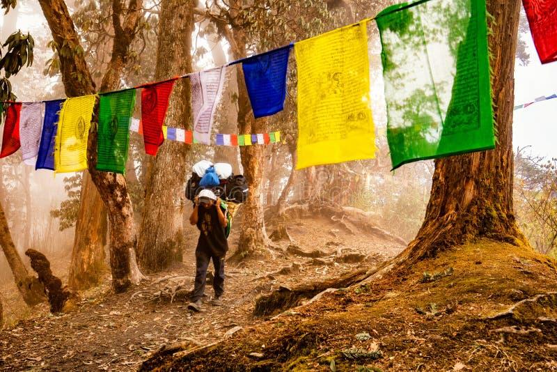 Sherpa image libre de droits