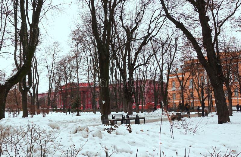 Shevchenko Park in Kiev. On a winter day stock images