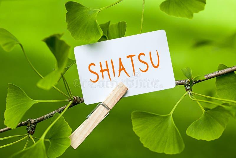shiatsu 免版税库存照片