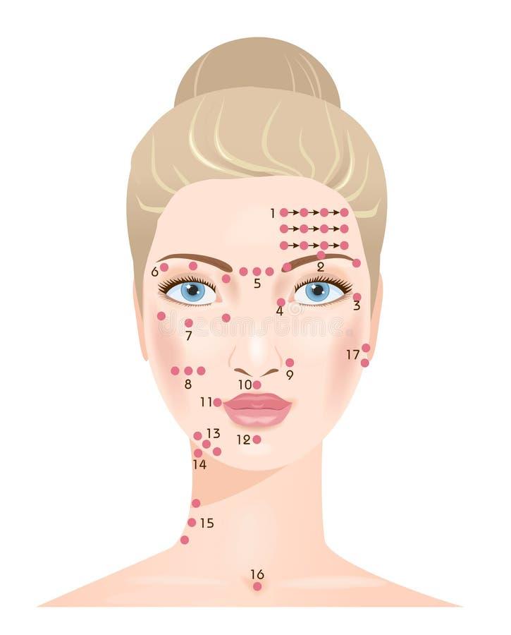 Shiatsu massage. Face points vector illustration
