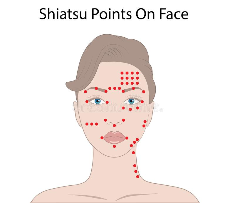 Facial Massage Technique and Shiatsu points, acupuncture Vector Illustration. Isolated on white background vector illustration
