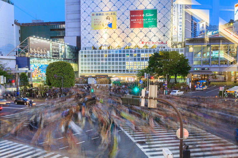 Shibuya横穿在晚上东京日本 图库摄影