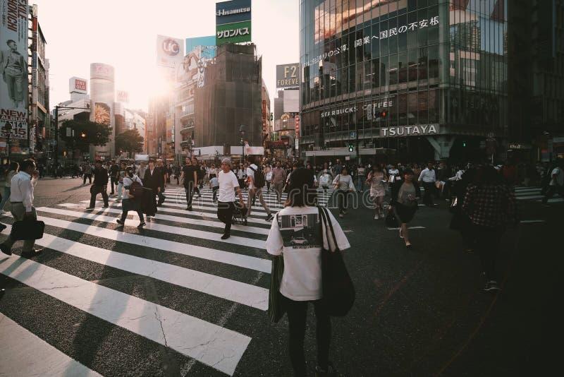 Shibuya?? 图库摄影