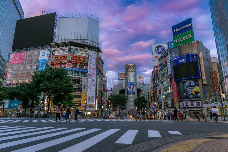 Shibuya bei Sonnenaufgang stockfoto