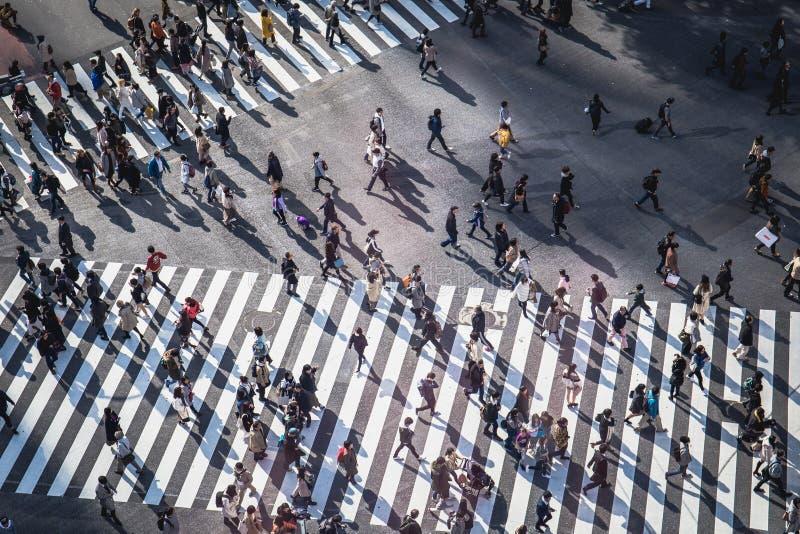 Shibuya ?berfahrt lizenzfreie stockbilder
