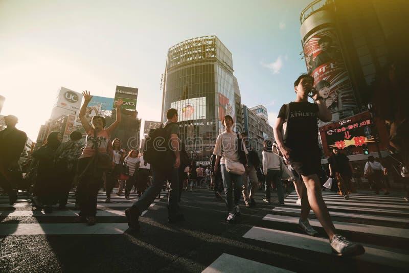 Shibuya ?berfahrt stockfotografie