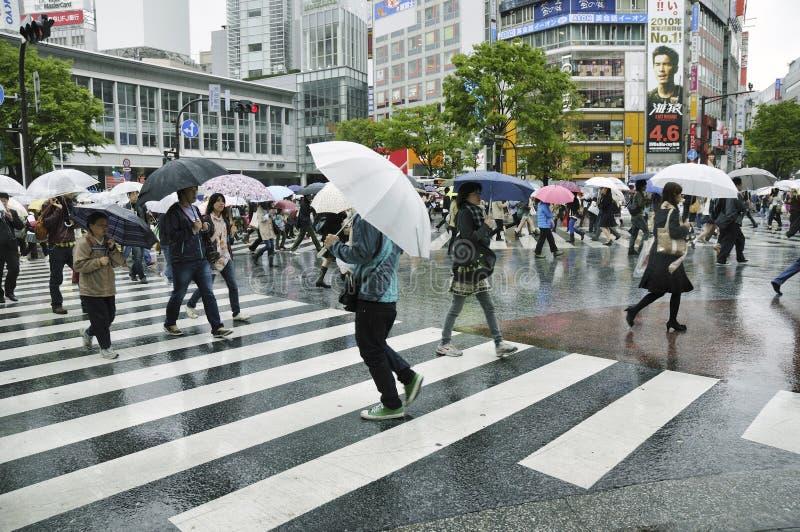 Download Shibuya crossing editorial image. Image of japanese, umbrella - 20748275