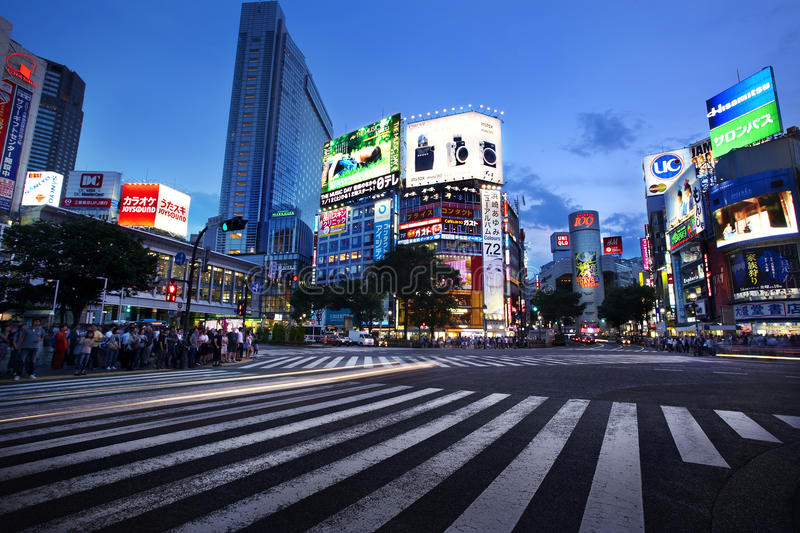 Shibuya Crossing royaltyfria bilder