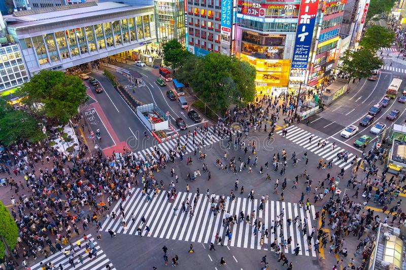 Shibuya Crossing is one of the busiest crosswalks in the world. Pedestrians crosswalk at Shibuya district. Tokyo, Japan stock photography
