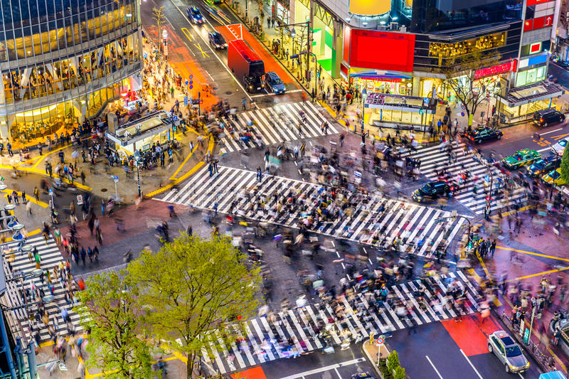 Download Shibuya Crossing in Tokyo stock photo. Image of japan - 56034668