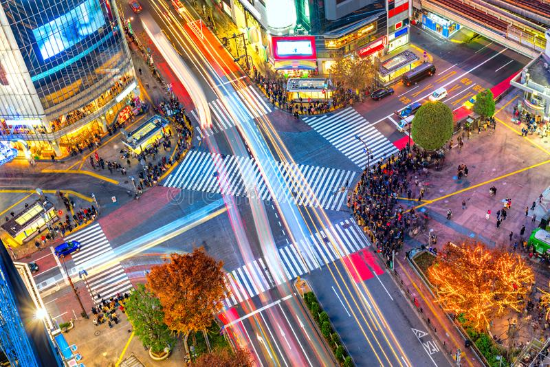 Shibuya District and Shibuya Crossing, Tokyo. royalty free stock images