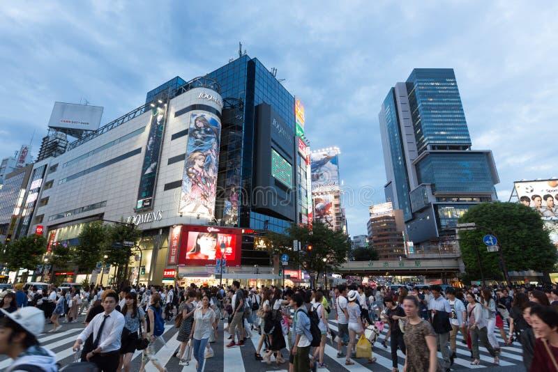 Shibuya korsning i Tokyo, Japan arkivfoton