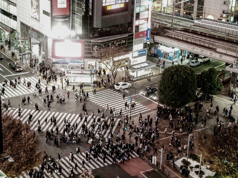 Shibuya korsning, Tokyo, Japan med lotten av folk royaltyfria bilder