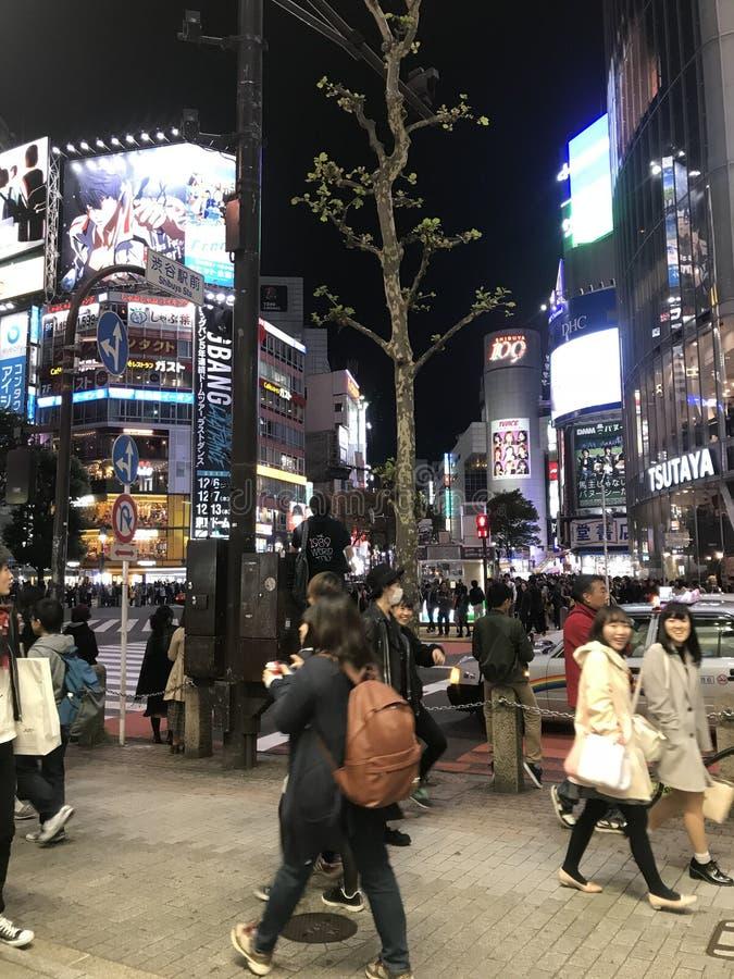 Shibuya-Nächte lizenzfreies stockbild