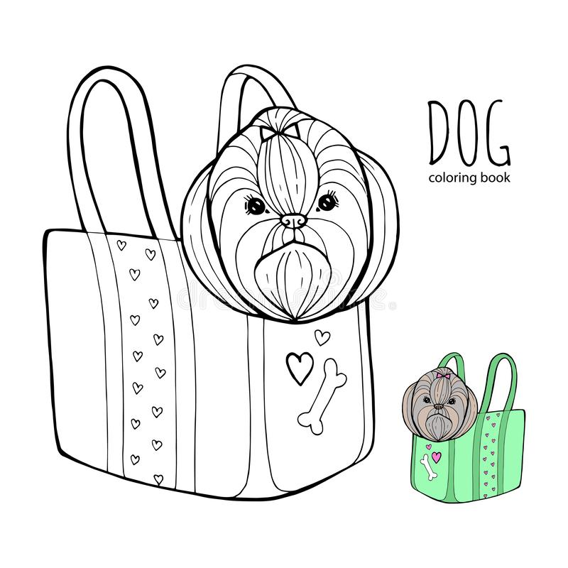 Shih Tzu Coloring Pages - Coloring Home   800x800