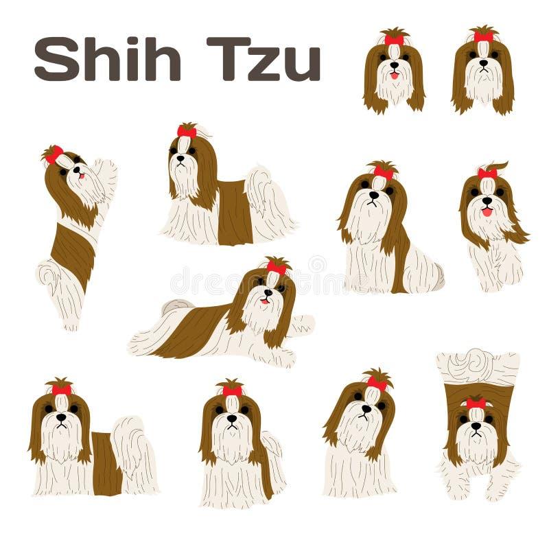 Shih Tzu, pies w akci, szczęśliwy pies royalty ilustracja