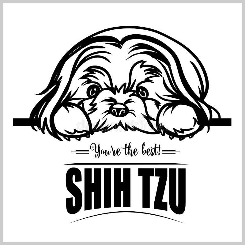 Shih Tzu - vectorillustratie voor t-shirt, embleem en malplaatjekentekens stock illustratie