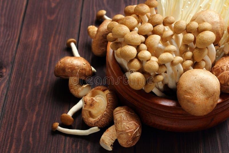 Shiitake is mushrooms for raw food. Shiitake is mushrooms for raw food on wood stock photography