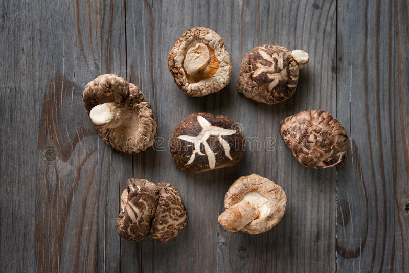 Shiitake mushrooms on wood background. Dried shiitake mushrooms on wooden background stock photos