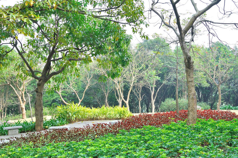 Shijing mountain park stock images