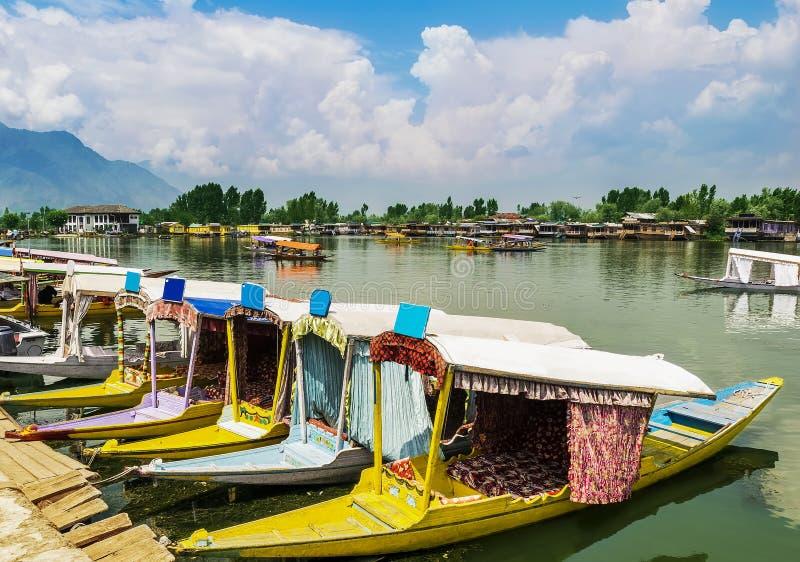Shikara łodzie/styl życia w Dal jeziorze, Srinagar, Kaszmir, India zdjęcie royalty free