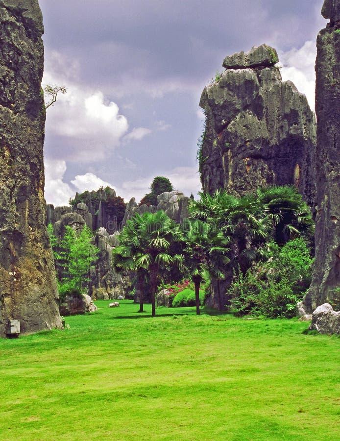 shilin -石森林的片段-在云南provi的昆明附近图片
