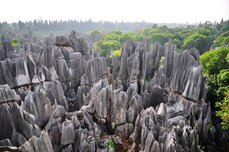 shilin lasowy kamień obraz stock