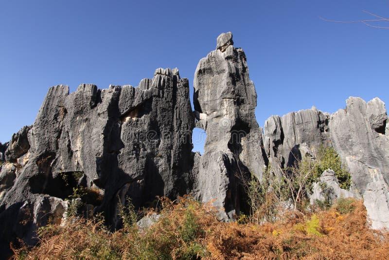 shilin porcelanowy lasowy gubernialny kamień Yunnan zdjęcia royalty free