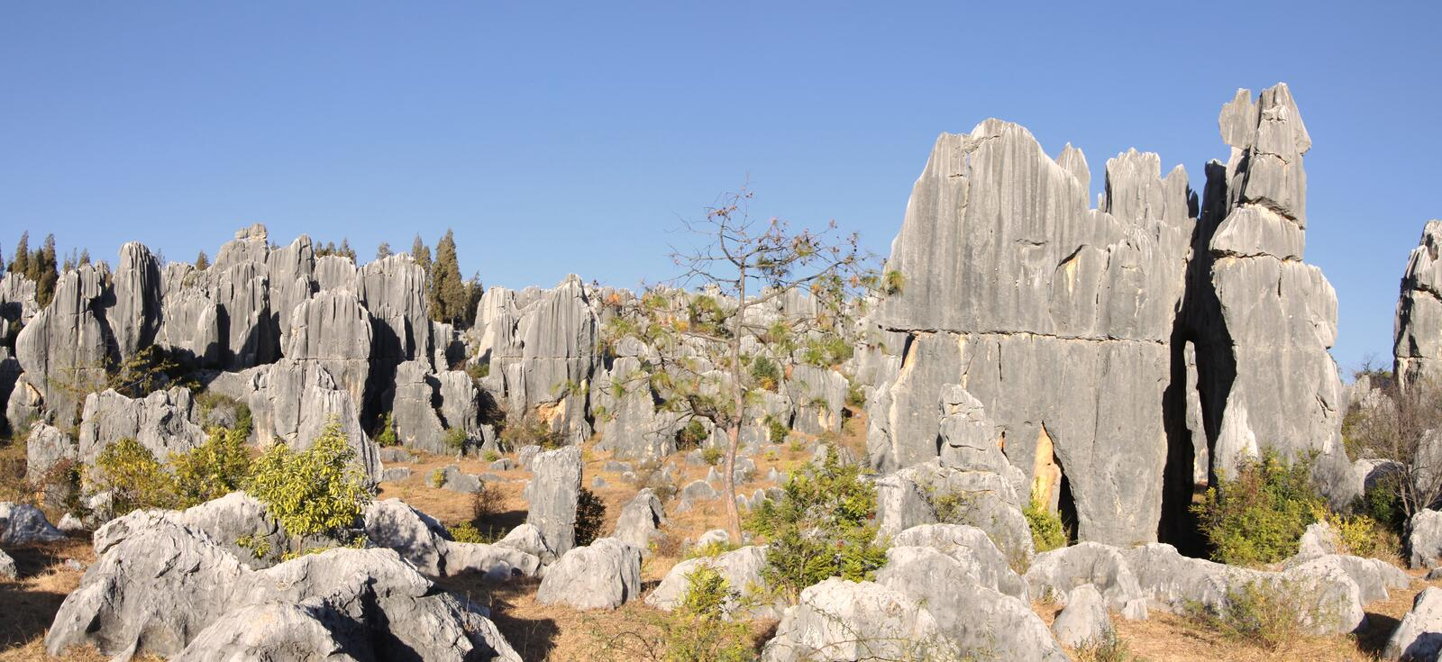 Shilin stone forest near kunming yunnan royalty free stock photography