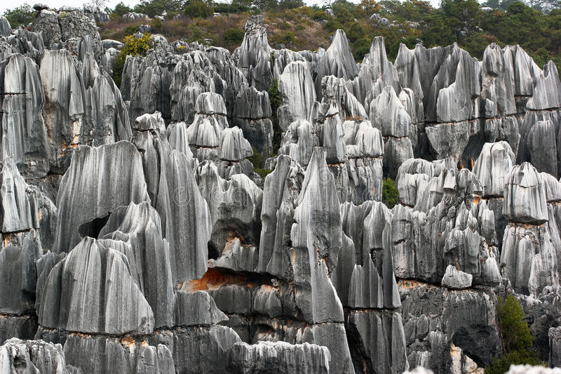 Shilin stone forest, world-famous natural karst area, China. Shilin stone forest, world-famous natural area of limestone formations and UNESCO World Heritage stock photos
