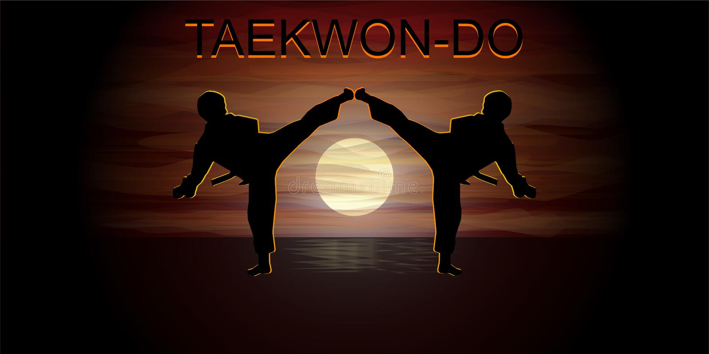 Shillouettes del Taekwondo que luchan imagen de archivo libre de regalías