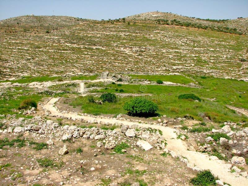 Shiloh, Israël royalty-vrije stock fotografie