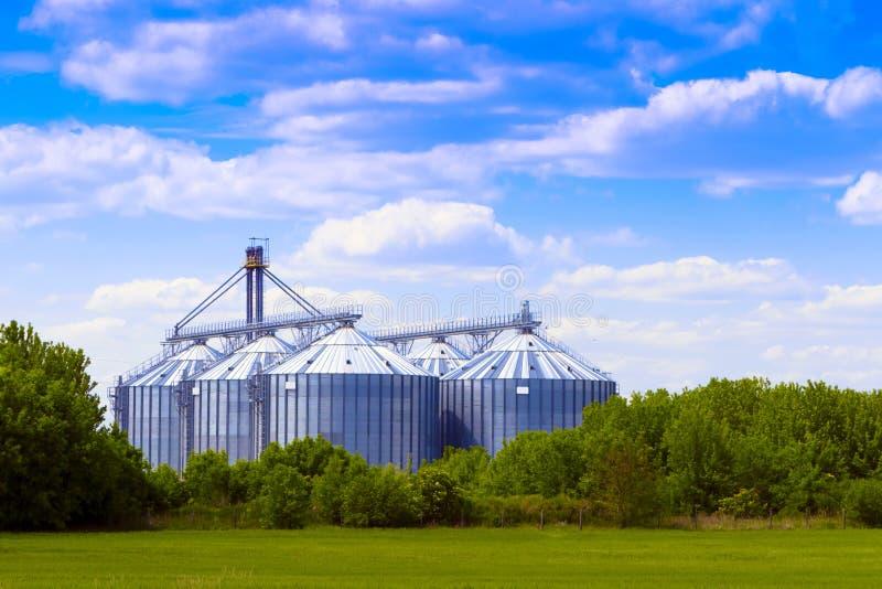 Shiloh nel campo, cielo nuvoloso. fotografia stock libera da diritti