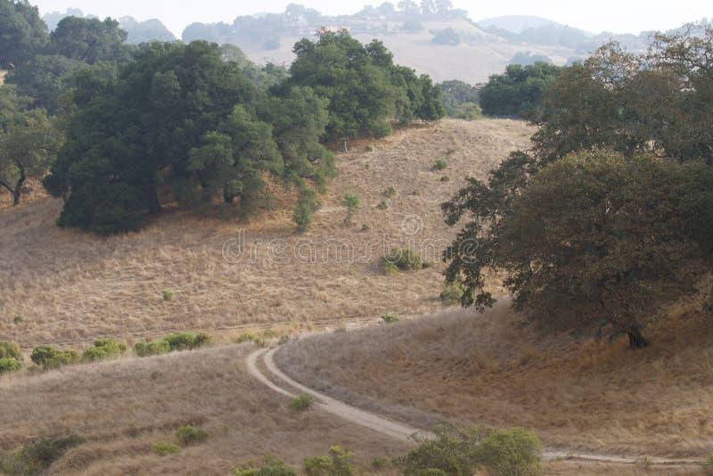 Shiloh Ranch Regional The-Park schließt Eichenwaldland, Wälder von Mischevergreens, Kanten mit ausgedehnten Ansichten Santa Rosas lizenzfreies stockfoto