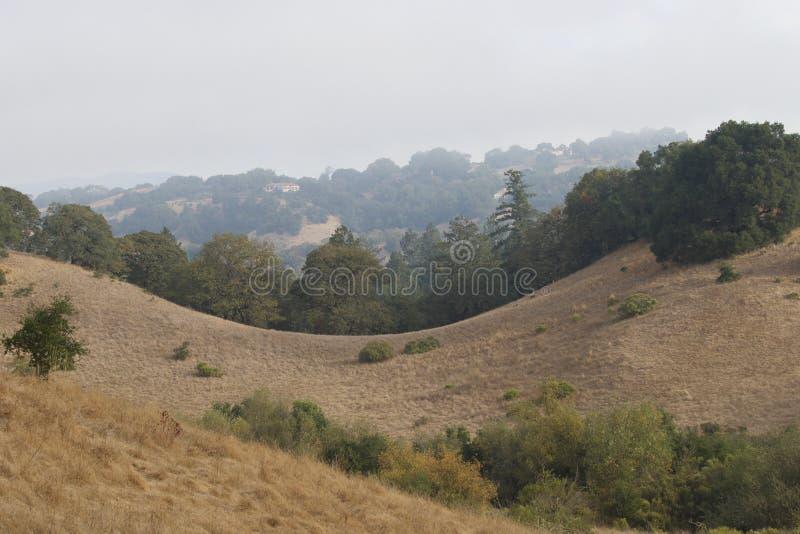 Shiloh Ranch Regional The parkerar inkluderar ekskogsmarker, skogar av blandade evergreen, kanter med att sopa sikter av Santa Ro arkivbild