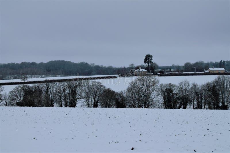 Shimpling Suffolk i snön arkivbilder