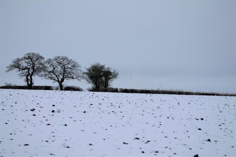 Shimpling Suffolk i snön fotografering för bildbyråer