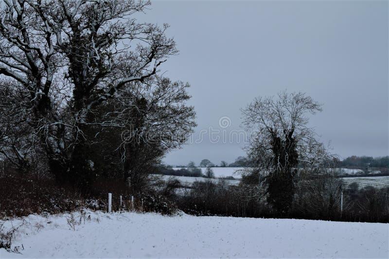 Shimpling Suffolk i snön arkivfoto