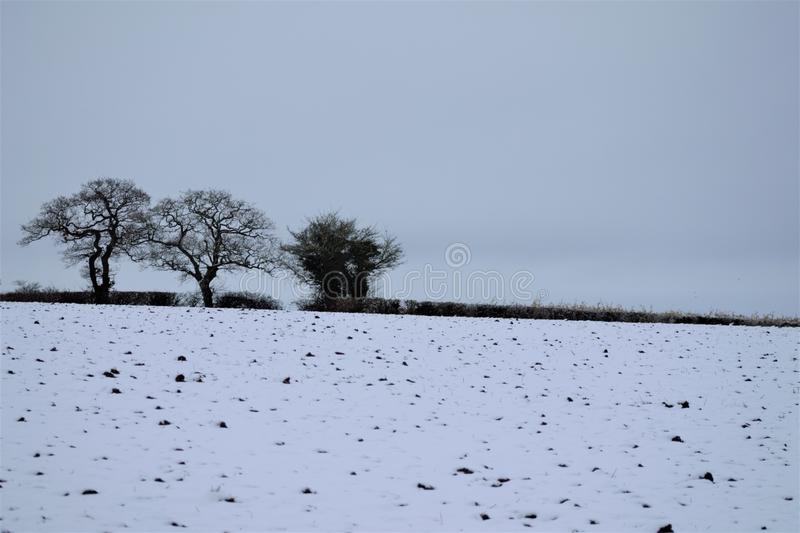 Shimpling Suffolk in the snow stock image