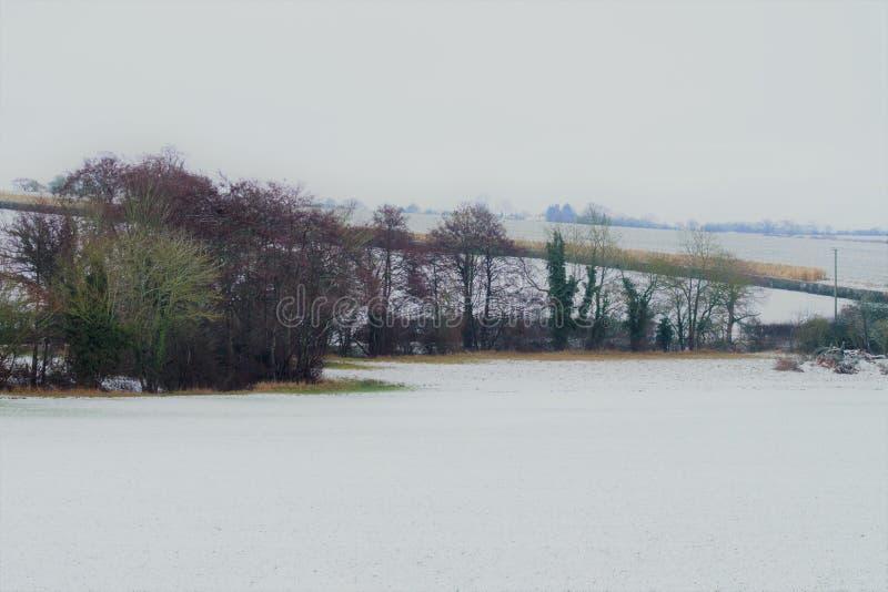 Shimplings-Suffolk im Schnee stockfotografie