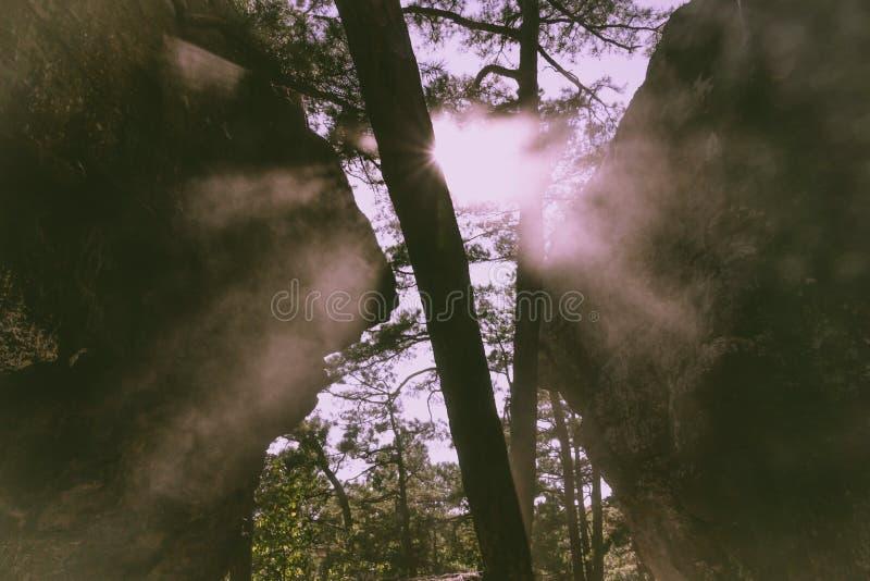 Shinedown стоковая фотография