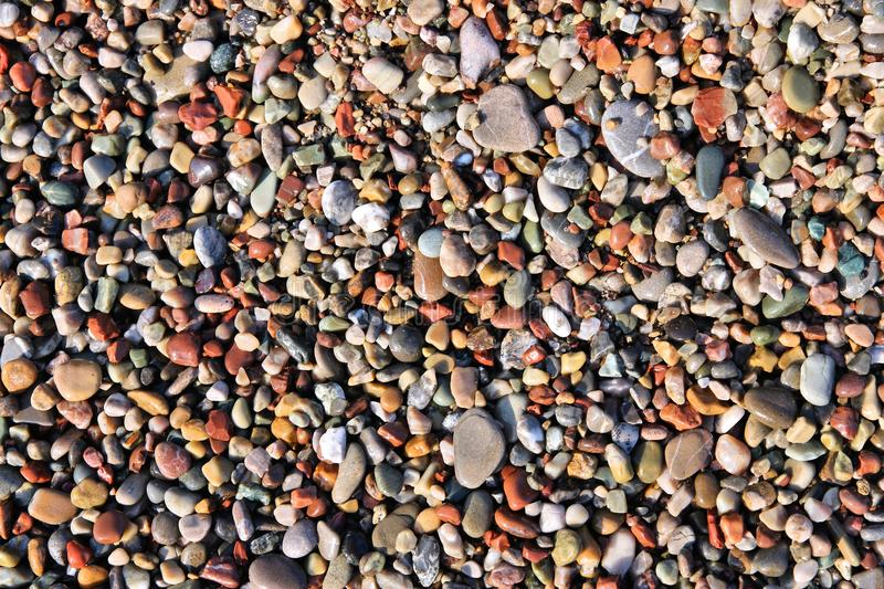 Download Shingle beach stock photo. Image of colorful, patterned - 42749642