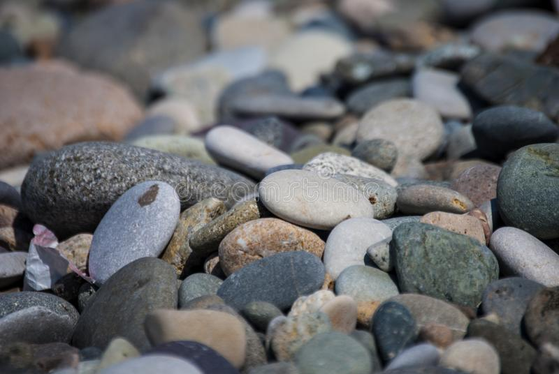 A shingle beach or beach stone. Shingle beaches are typically steep, because the waves easily flow through the coarse, porous surface of the beach, decreasing royalty free stock photos