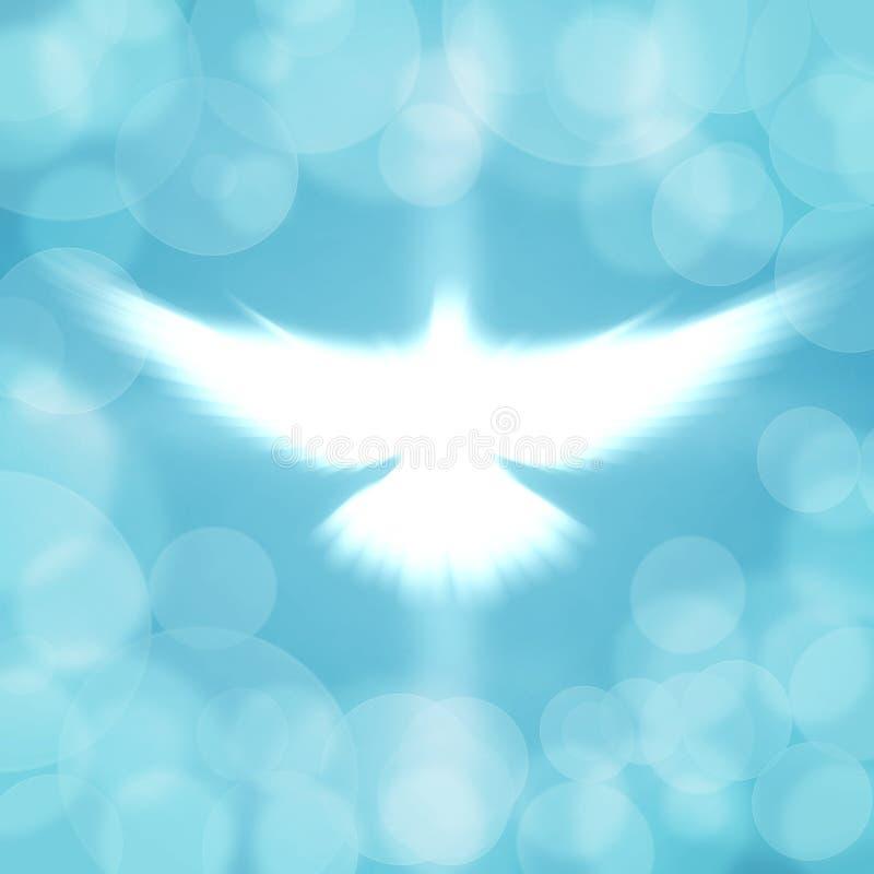Shining dove vector illustration